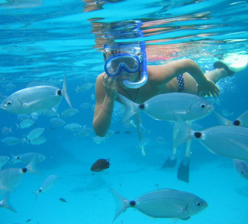 Gite in barca - Snorkeling